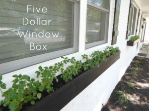 FIVE DOLLAR WINDOW BOX