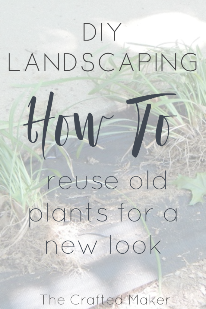 Landscaping can drastically change the look of a home. Use the plants you already had planted to create a whole new look for very little money.